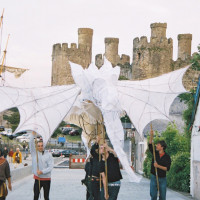 Dragon in Conwy