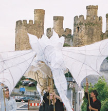 Conwy River Festival