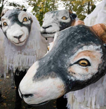 Skipton Sheep