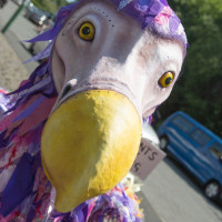 Portrait of Amelia the dodo; photo by Craig Shaw