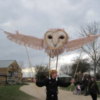 Barn Owl delivered to Hobbledown