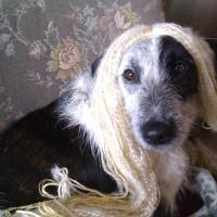 Princess Panchana modelling Kelda's wig