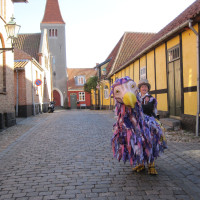 Dodos explore the streets of Rønne
