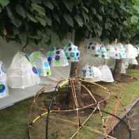 Lanterns drying