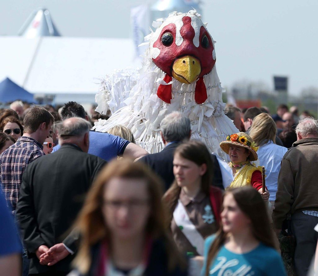 Giant Chicken puppet in a crowd at a festival